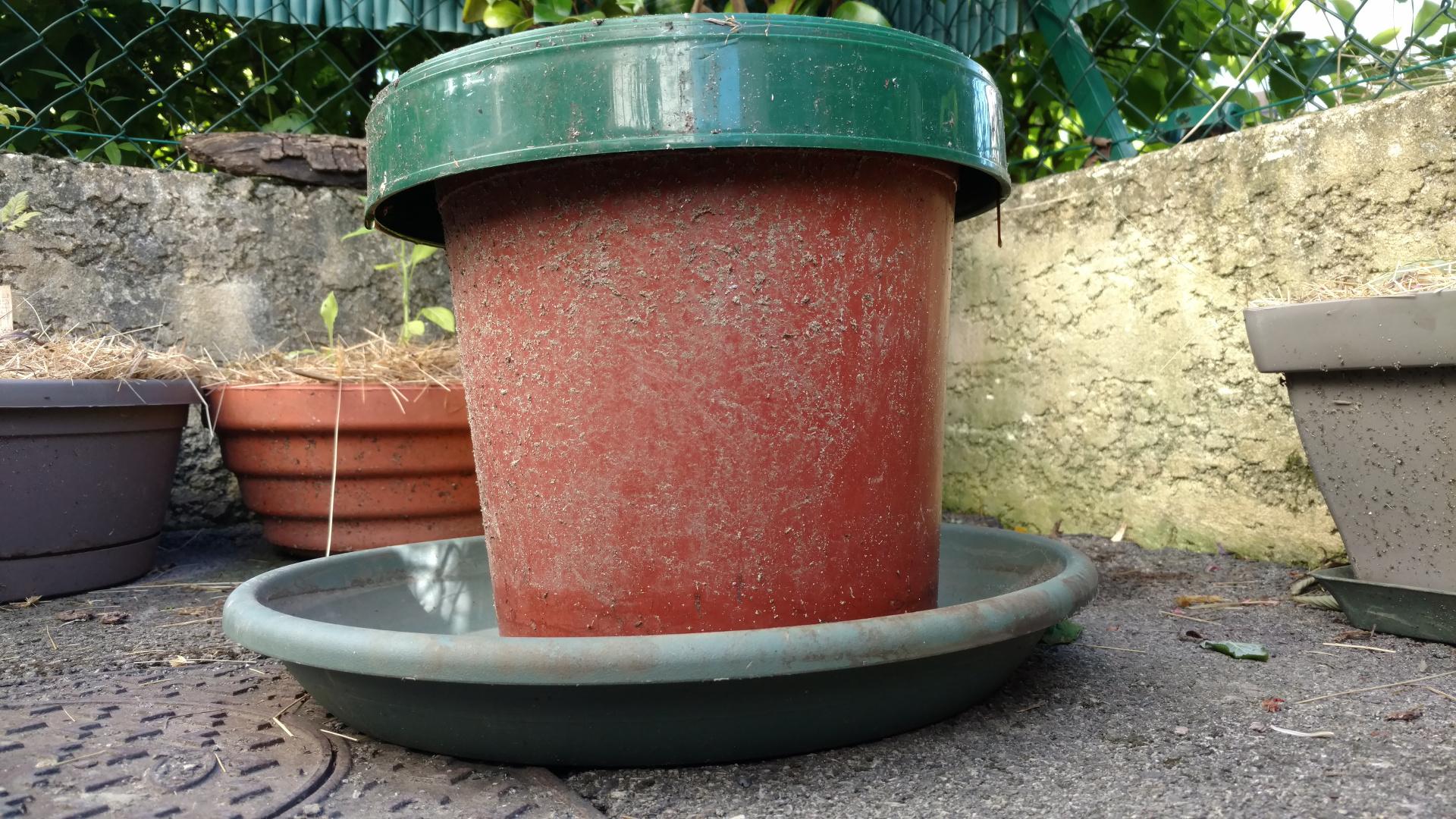 compsteur-terrasse-balcon-potager-minimaliste