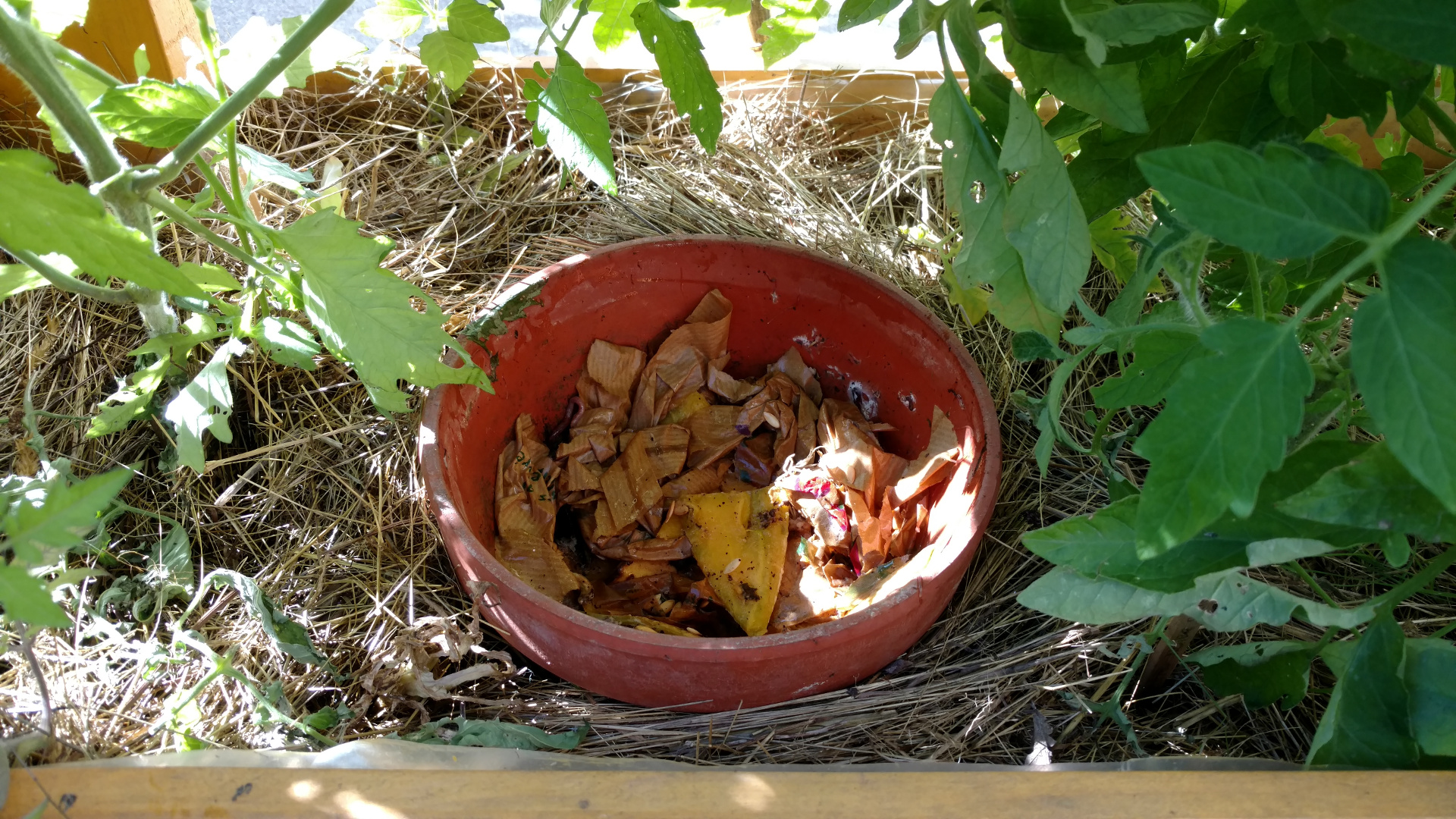 lombricompost-permaculture-balcon-potager-compost
