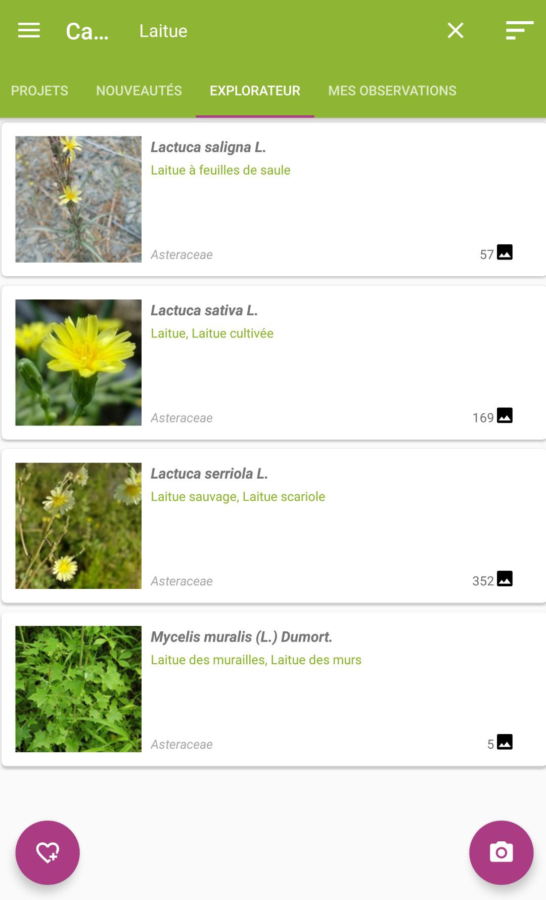 Les applications mobiles pour la permaculture urbaine / Plantnet