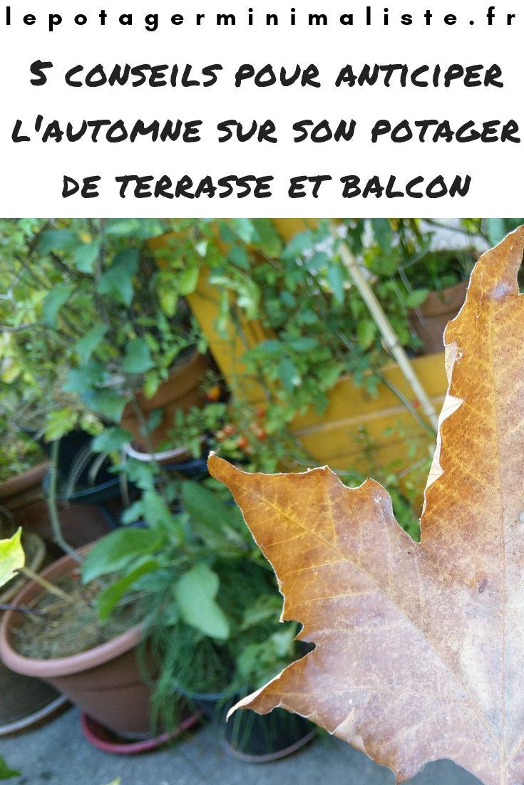 5-conseils-automne-potager-terrasse-balcon-pinterest