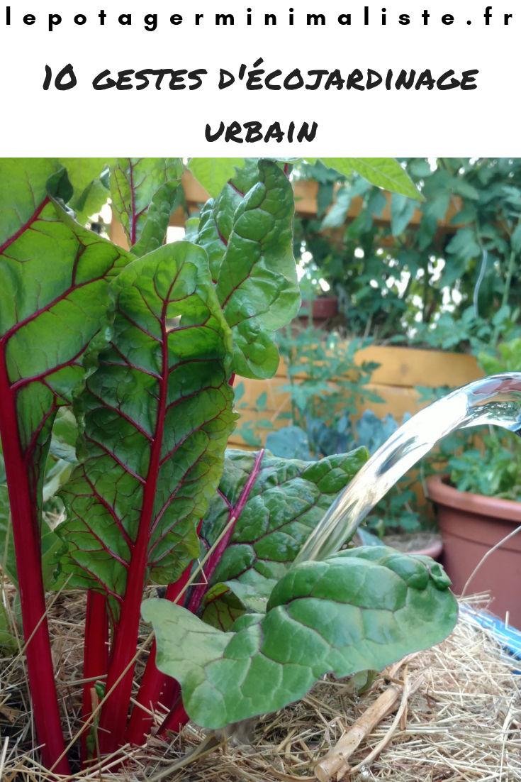 ecojardinage-urbain-permaculture-potager-terrasse-pinterest