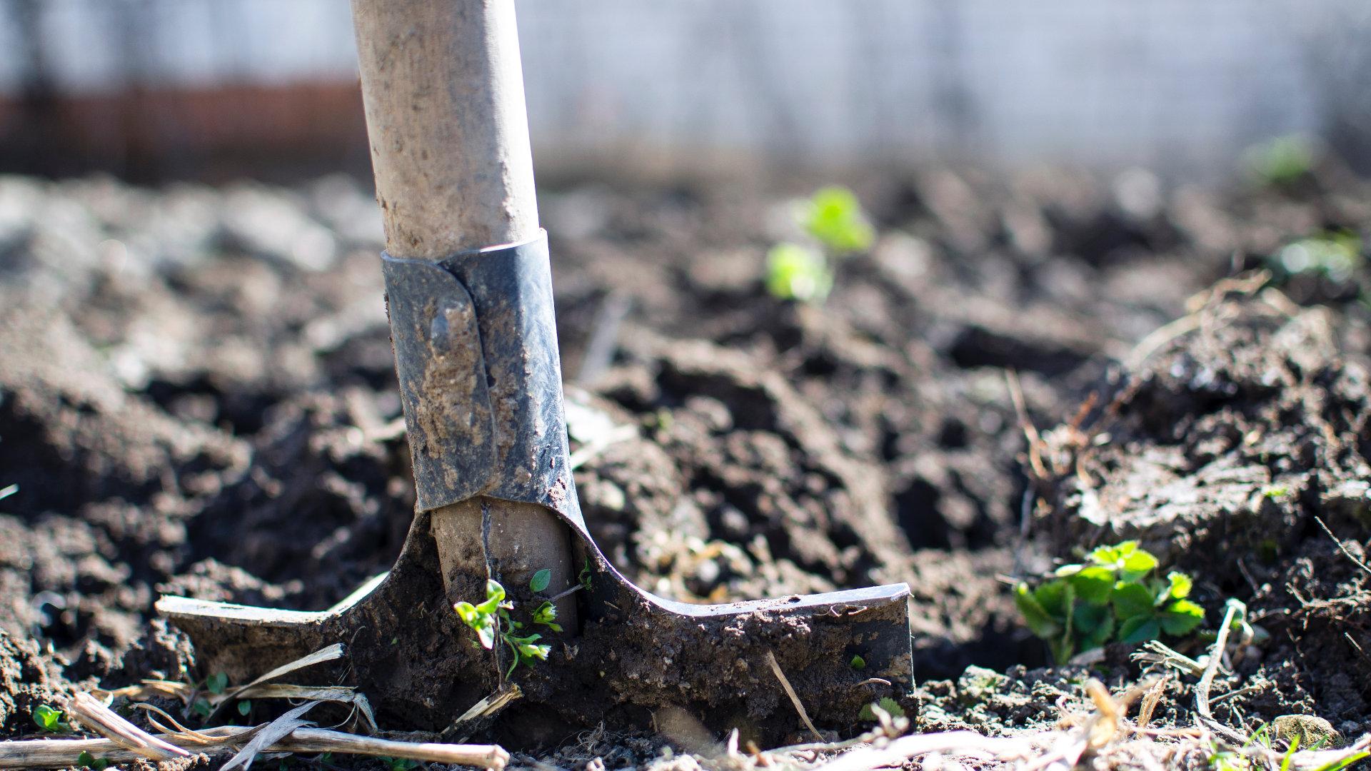 permaculture-agriculture-urbaine-jardinier-municipal
