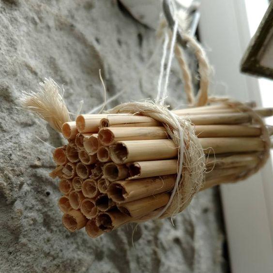 abris-abeille-solitaire-biodiversite-permaculture