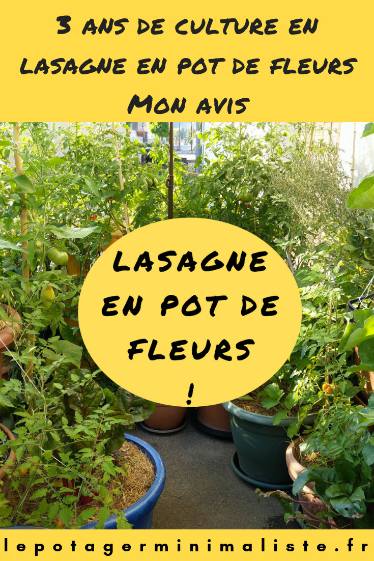 culture-lasagne-pot-fleurs-balcon-terrasse-pinterest