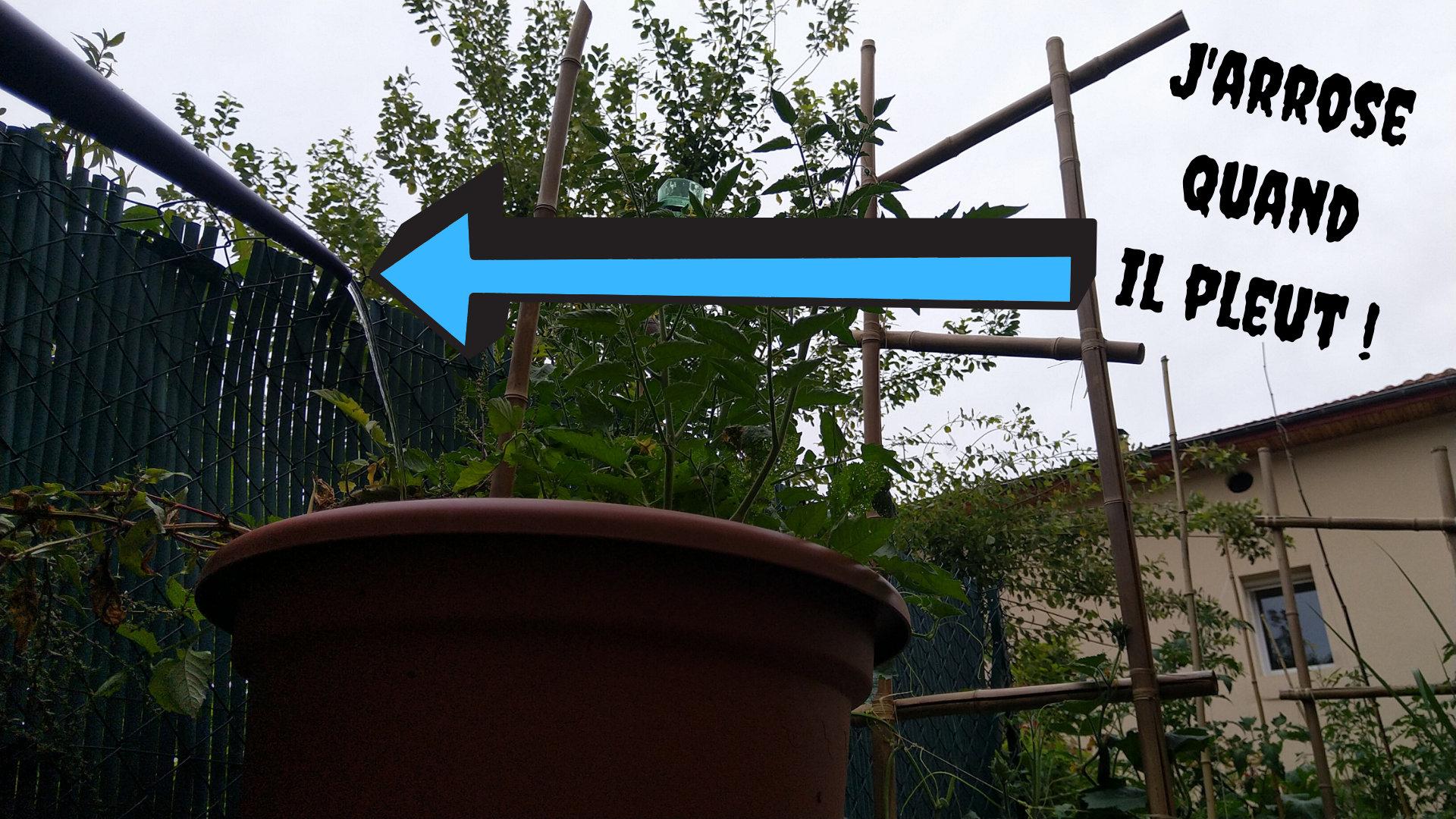 arroser-pluie-pot-fleurs-permaculture