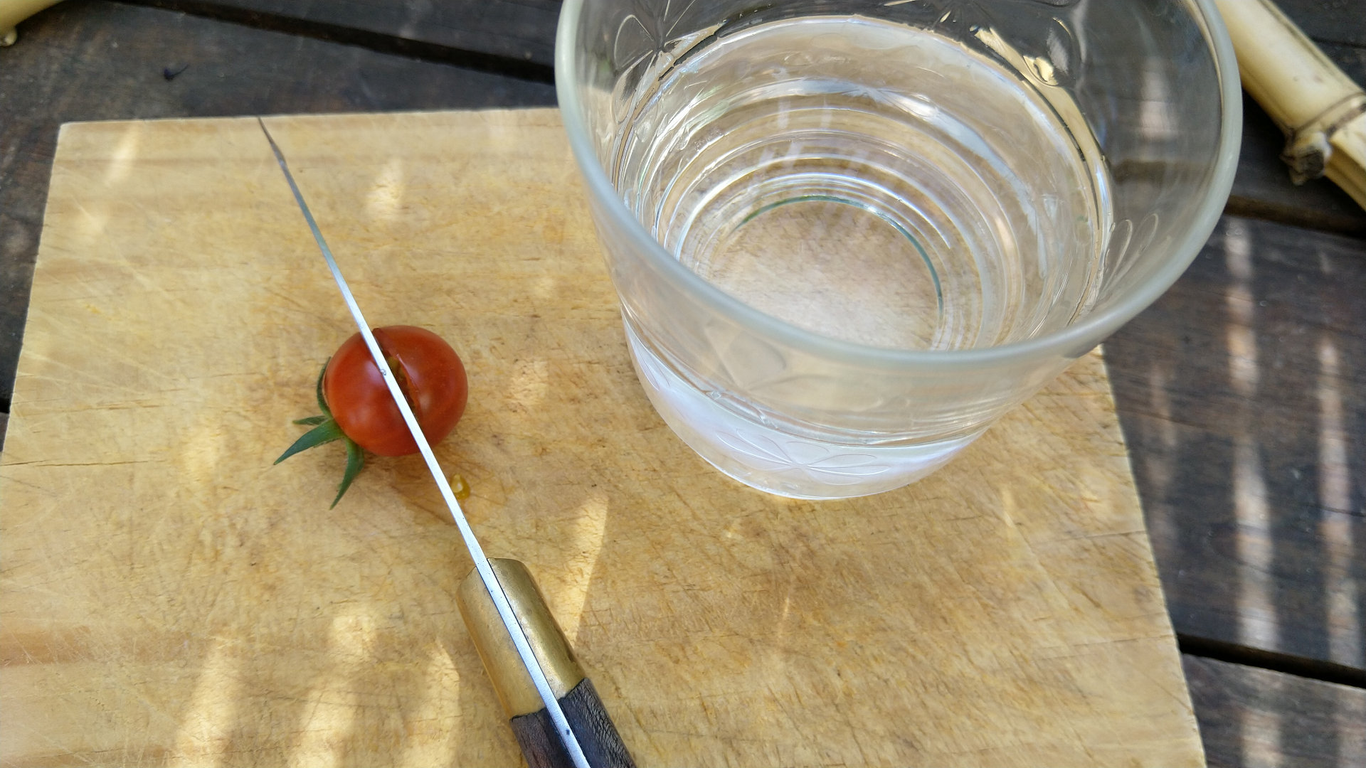 recolte-graine-tomate-coupe-couteau