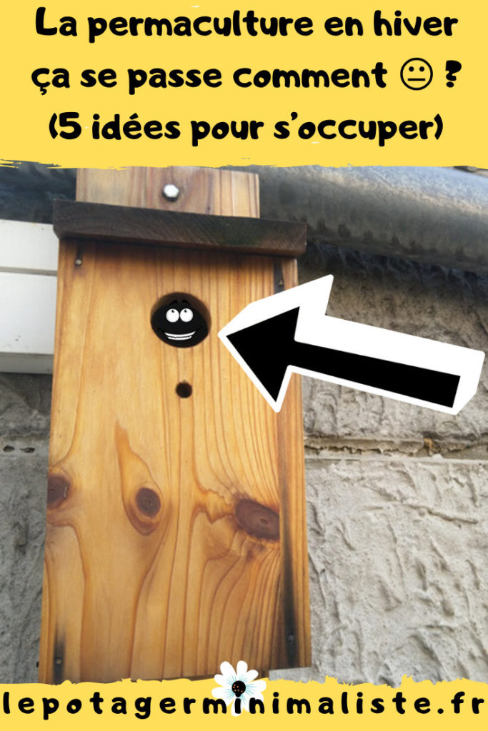 5-idees-permaculture-urbaine-hiver-pinterest