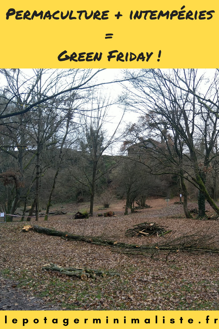 intemperies-neige-permaculture-green-friday-pinterest
