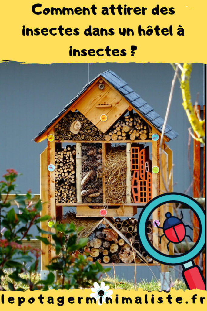 comment-attirer-insectes-hotel-insectes-pinterest