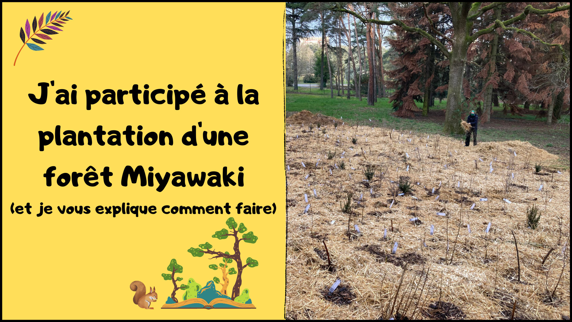 plantation-foret-miyawaki-lyon-parilly